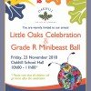 Invite Little Oaks Celebration 2018