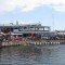 Oakhill Prep Waterfront Chukka Festival 2019 (1)