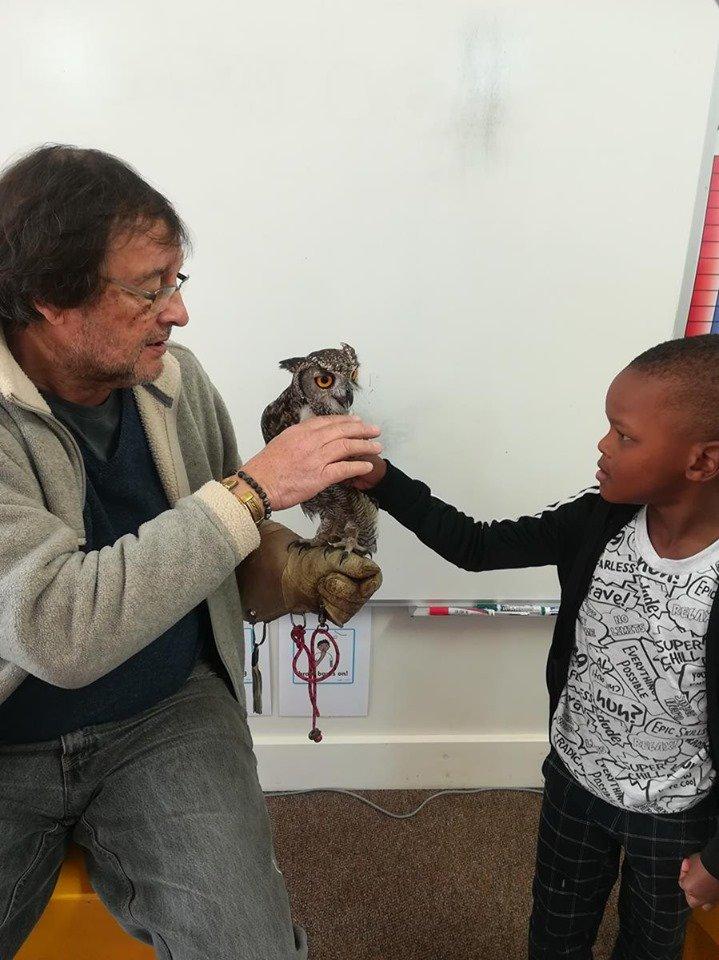 Little Oaks Owl Encounters (2)