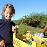 Oakhill Grade 1 African Safari Adventure (3)