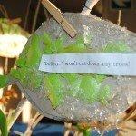 Oakhill School World Environment Day (15)