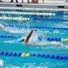 Amateur_Swimming_Backstroke